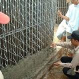دانلود پاورپوینت استفاده و کاربرد Jk Structure در ساختمان(پروژه روش های پیشرفته ساخت)