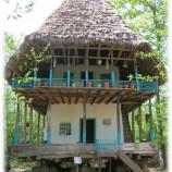 بررسی سازه های سنتی در خانه های مسکونی گیلان(پروژه سازه های سنتی)