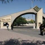 تحلیل و بررسی دانشگاه بین المللی قزوین به همراه تمامی پلان ها و تصاویر